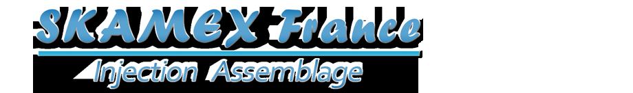SKAMEX France Logo